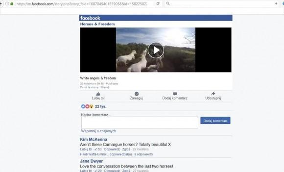 Как сохранить видео с Facebook?