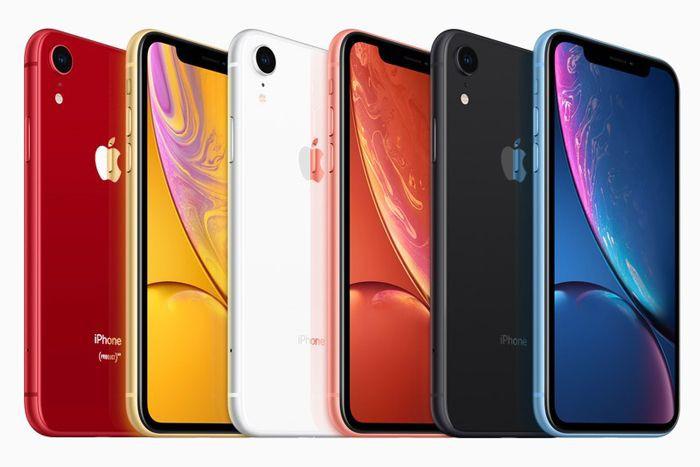 Apple должна стандартизировать модельный ряд iPhone